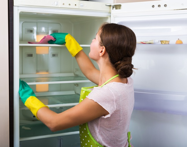 Housewife cleaning refrigerator